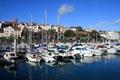 IMG_9304_Guernsey
