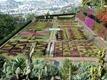 Funchal_botanical_gardens