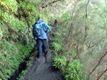 Madeira_day2_levada2
