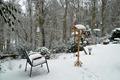 P1020983-Snowy-Garden