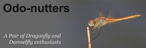 Odo-nutters-Banner