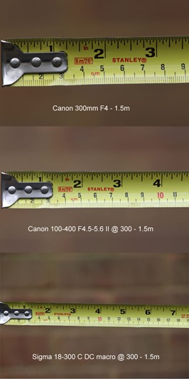 300mm-3-way-lens-comparison